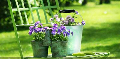 Articulos de jardin quilmes herramientas decoracion for Articulos decorativos para jardin