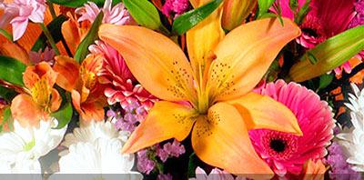 Ramos con flores y arreglo floral